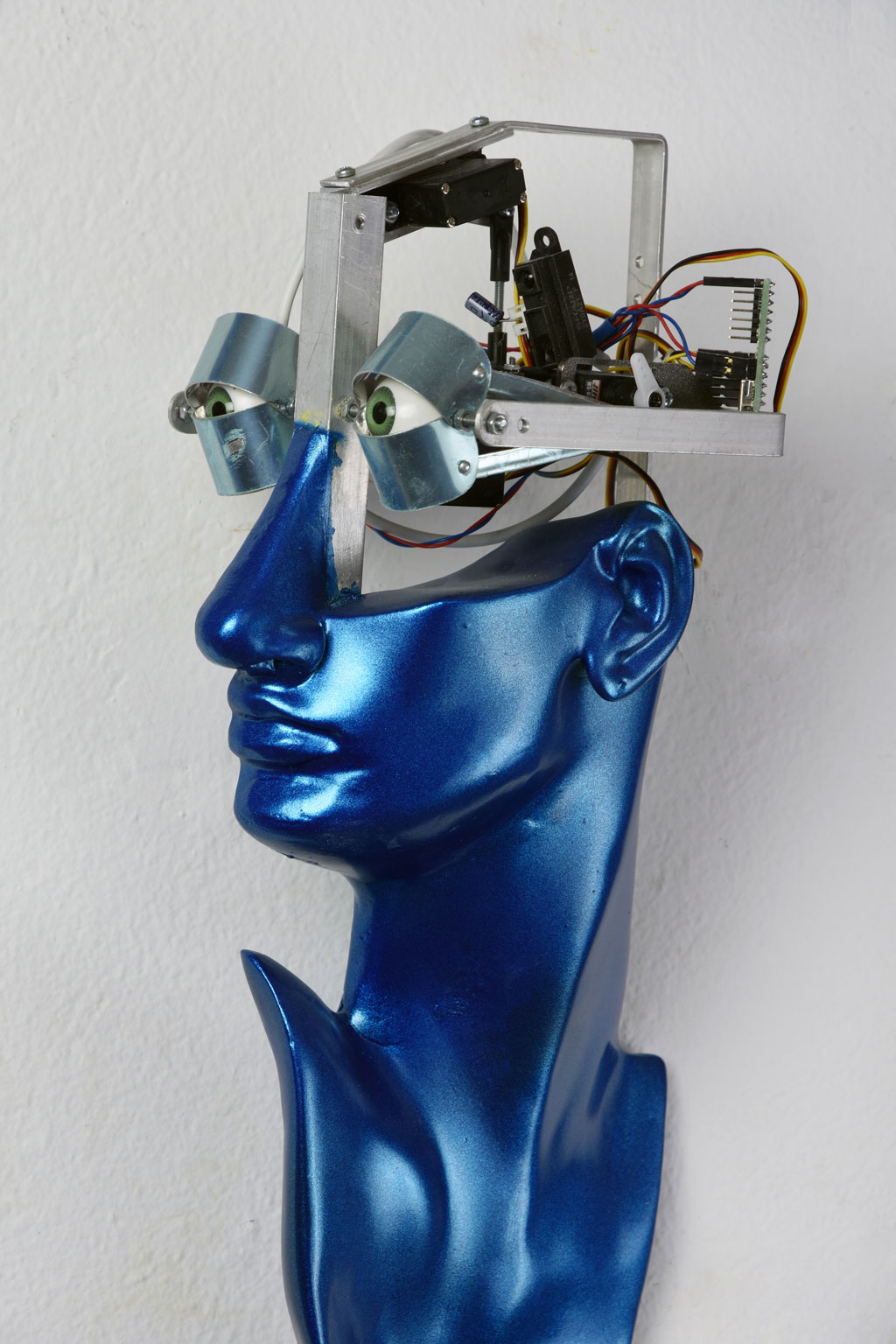 Robot portraits, Pollaiuolo Young Woman, 2015