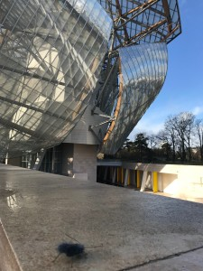 00) MUSEUM BUG -MIcro robots n.314 - Foundation Louis Vuitton , Parigi - 9 Dicembre 2017