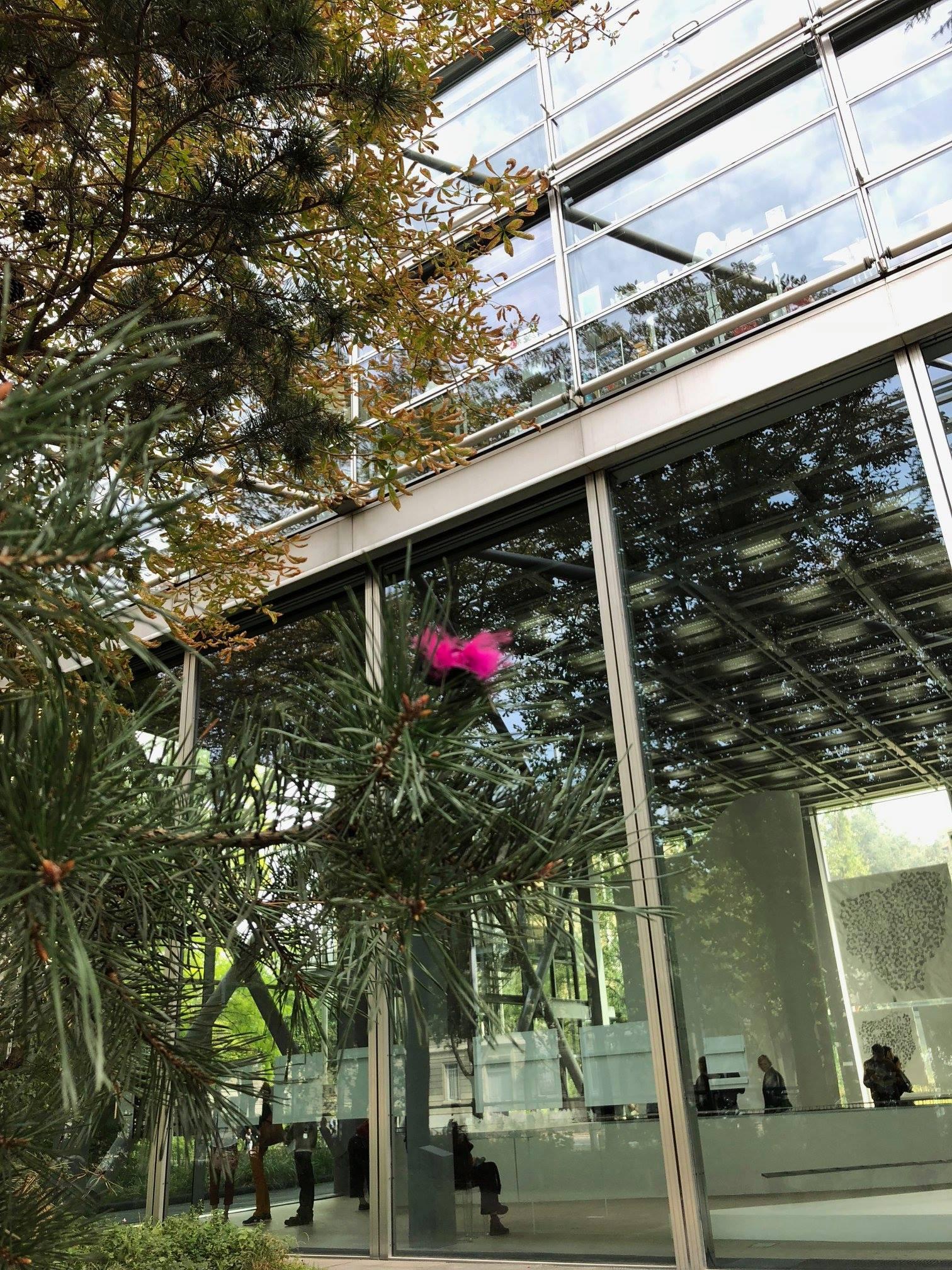 05) MUSEUM BUG Micro Robots n.315 - Foundation Cartier, Parigi - 11 settembre 2018